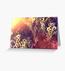 Painting with light. Greeting Card