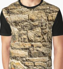 Stone Wall Surface Structure (ocher, medium) Graphic T-Shirt