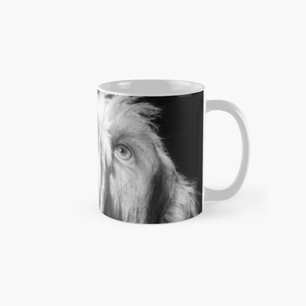 Looking up Spinone Classic Mug