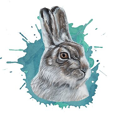 hare  by ilustradsn