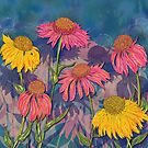 Colourful Coneflowers by lottibrown