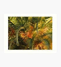 Palm Jungle Art Print