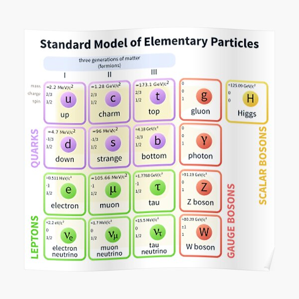 Elementary Particles - Standard Model Poster