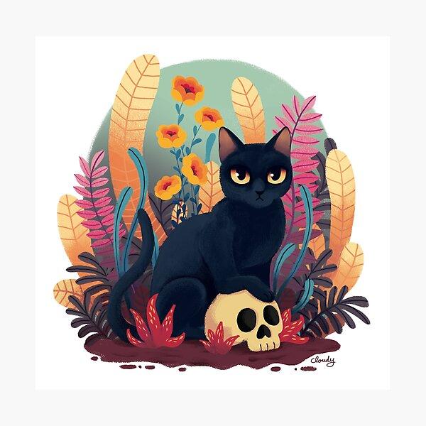 Skull kitty Photographic Print