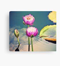 Pink Lotus Flowers (Namaste) Canvas Print