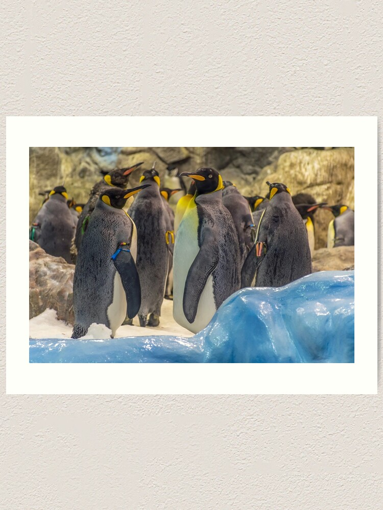 Alternate view of Cute penguins Art Print
