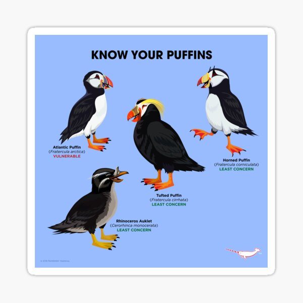 Know Your Puffins Sticker