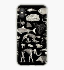 Paleontology Illustration iPhone Case