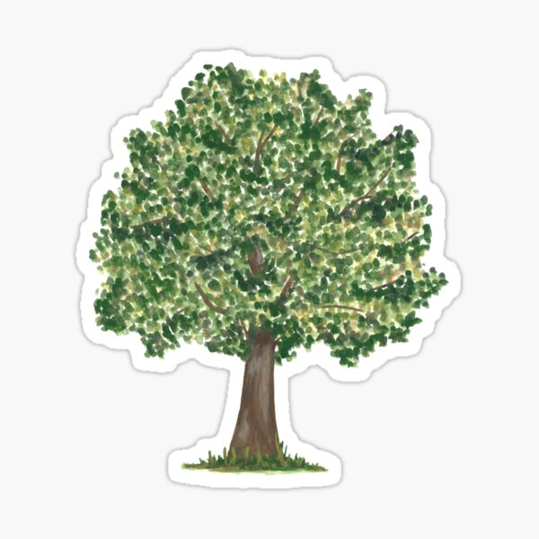 Oak Tree Sticker
