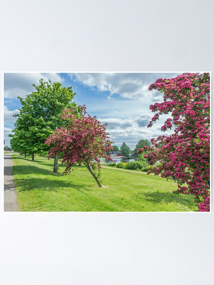 Alternate view of Colorful autumn scene Poster