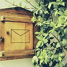 Greening green basque PO Box by Yoo-lee-a