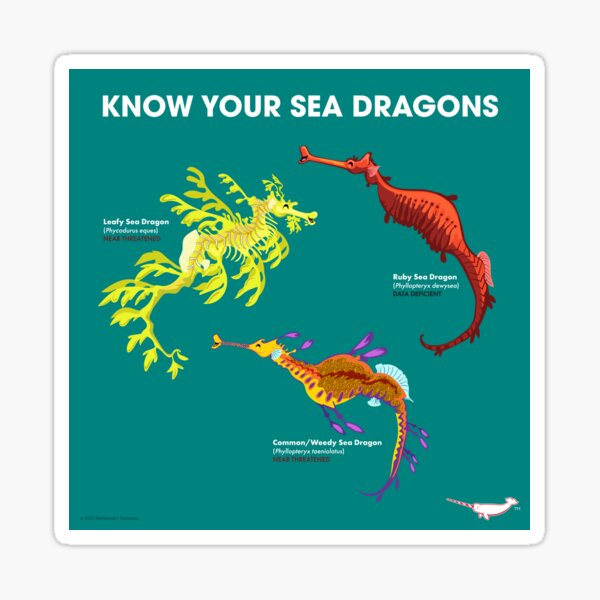 Know Your Sea Dragons Sticker
