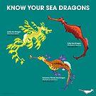 «Conoce tus dragones marinos» de PepomintNarwhal