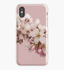 Cherry Blossom Festival in Kyoto iPhone Case