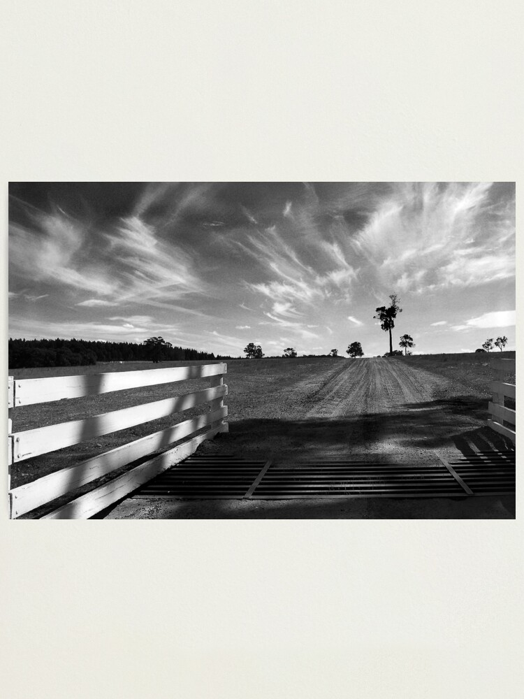 Alternate view of Road to the Vineyard Photographic Print
