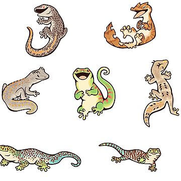 Gecko sticker batch de Colordrilos