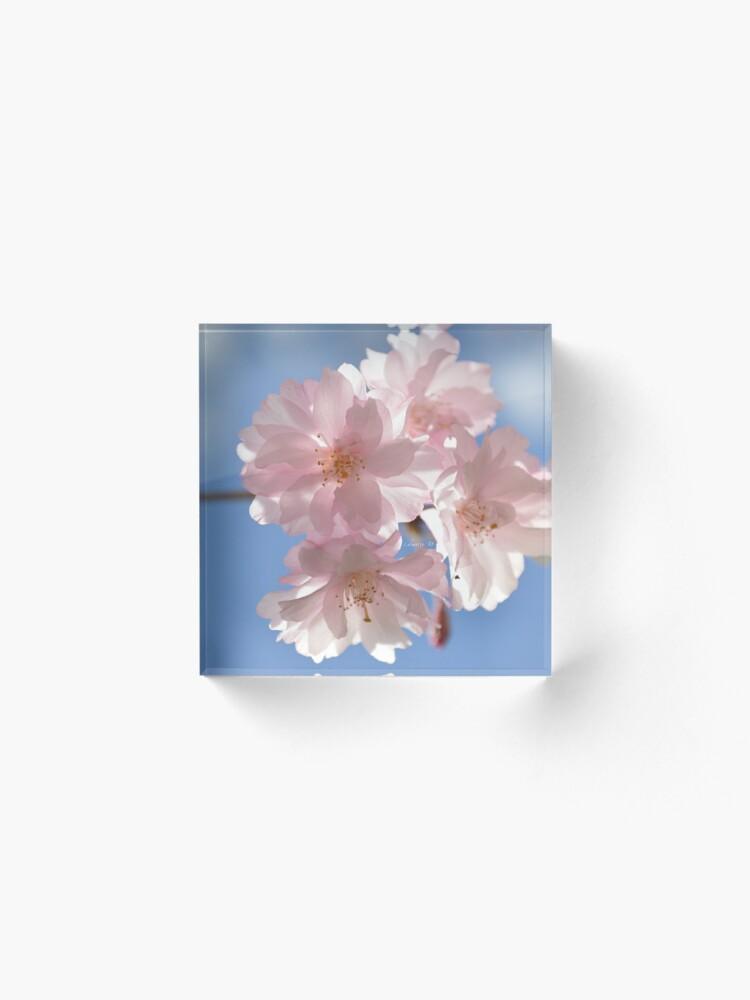 Alternate view of Cherry Blossom Photograph Acrylic Block