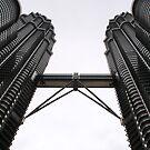 Petronas by Vivek Bakshi