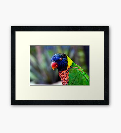 Green Nape Framed Print