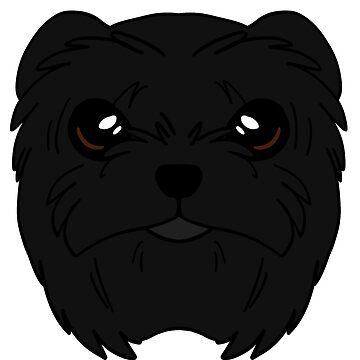 Affenpinscher by sadsurplus