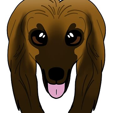 Afghan Hound by sadsurplus