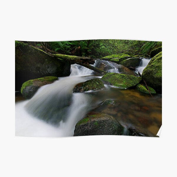 Cascading through the Mossy Boulders Poster