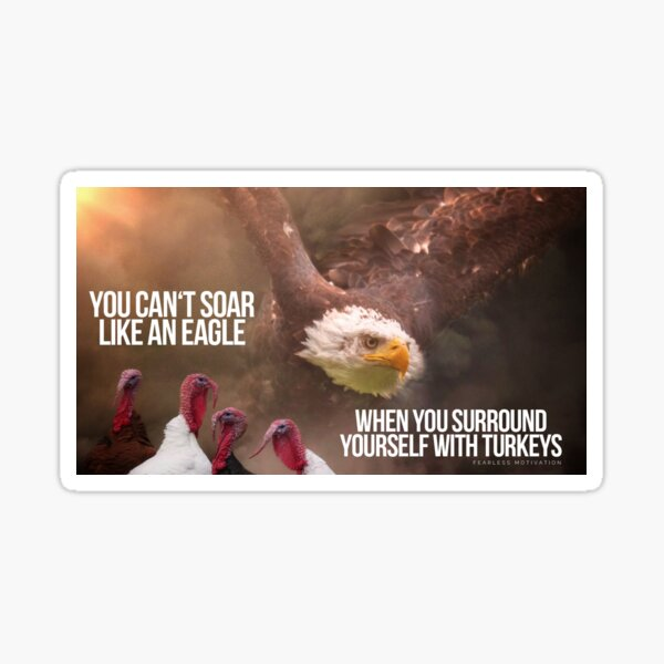 YOU CAN'T SOAR LIKE AN EAGLE... Sticker