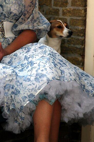 Doggie by patjila