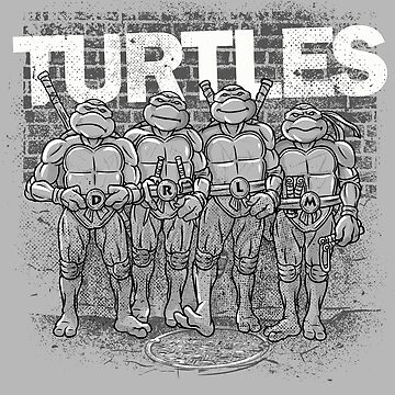 Turtles by rustenico