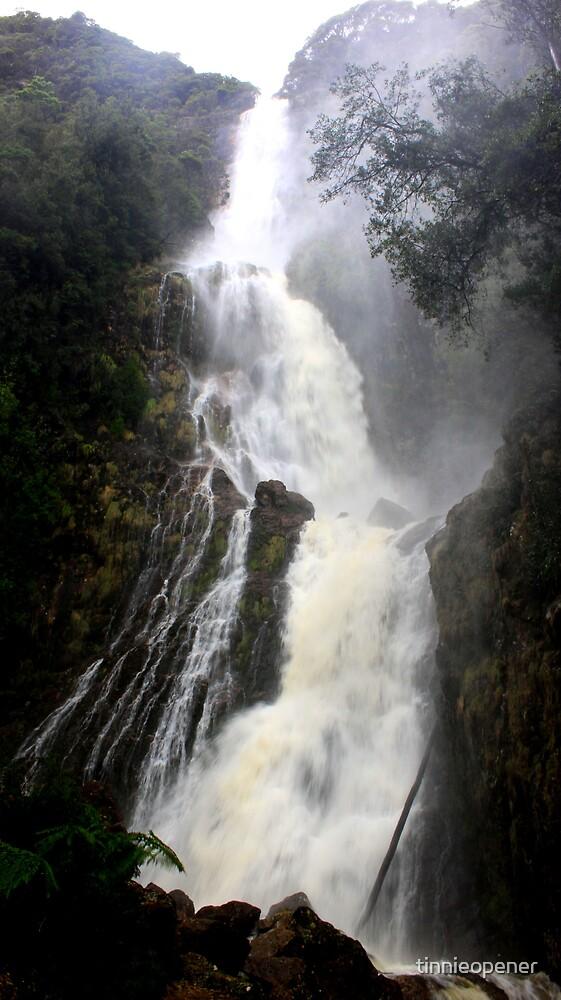 Quot Montezuma Falls Tasmania Quot By Tinnieopener Redbubble