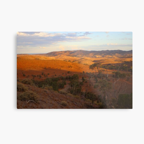 Sunset, Bendleby Ranges, Australia Metal Print