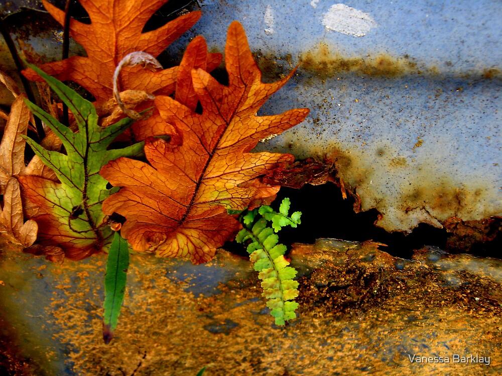 Beyond Bog - A New Beginning by Vanessa Barklay