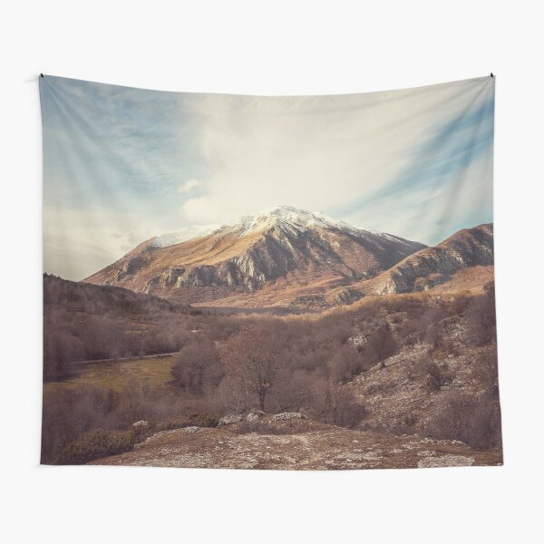 Mountains in the background XVII Tapestry