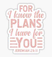 Jeremiah 29:11 (Pink) Sticker