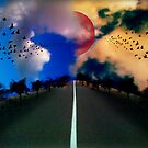 The road by Colleen Milburn