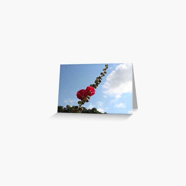 Stretch into the sky Greeting Card