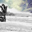 Bocas Del Toro Beach, Panama by Al Bourassa