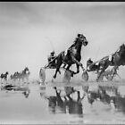 Wadden Sea Horse Race by Manfred Belau