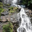 Amicalola Falls  by abryant
