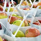 Apples Harvest by Adria Bryant