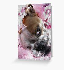 Pretty in Pink.... Greeting Card