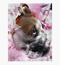Pretty in Pink.... Photographic Print