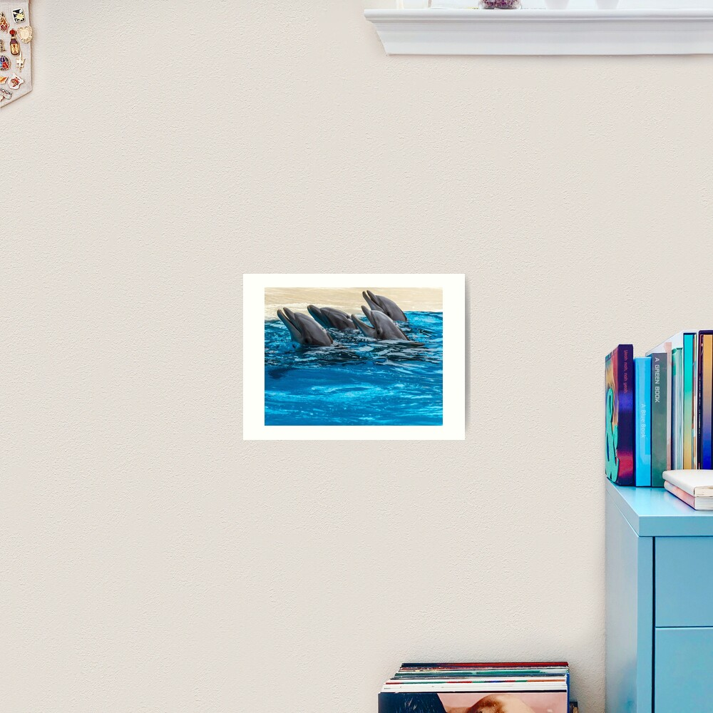Four dolphins and blue water Art Print
