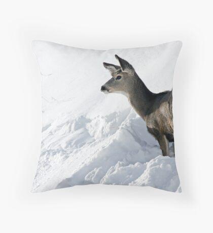 Doe Pausing In Deep Snow Throw Pillow