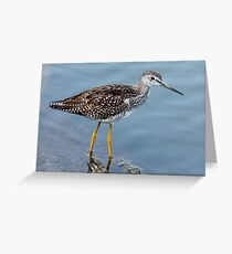 Greater Yellowlegs Profile Greeting Card
