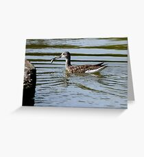 Skilled Anglers Those Greater Yellowlegs Greeting Card