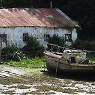 Corrugated Shed & Dilapidated Boat, Caernarfon by wiggyofipswich