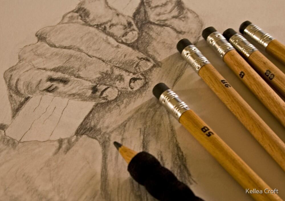 Pencil Sketching by Kellea Croft