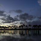 Hawaiian Dusk - Jewel Tone Lights at Duke Kahanamoku Lagoon Waikiki  by Georgia Mizuleva