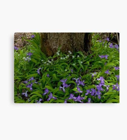 Woodland Bouquet   Canvas Print